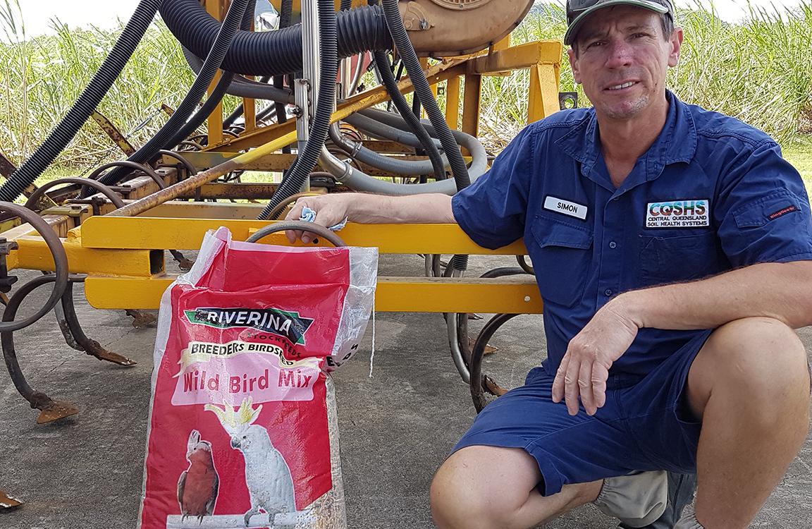 Sugar cane farmer use bird mix
